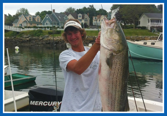 Maine Striper Fishing